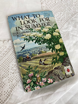 What to Look for in Summer Ladybird Book