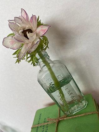 Elliman's Embrocation Vintage Bottle