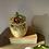 Thumbnail: Wade Heath Flower Preserve Pot
