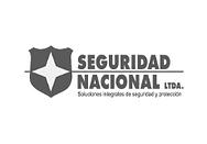 Seguridad Nacional.png