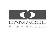 Camacol Risaralda.png