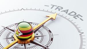 Commerce: Le Zimbabwe rejoint 28 pays africains pour une zone de libre-échange