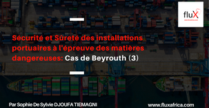 Sécurité et Sûreté des installations portuaires à l'épreuve des matières dangereuses:Cas de Beyrouth