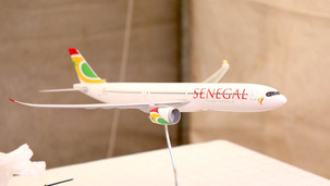Transport: Le Sénégal organise une grande opération de rapatriement de ses ressortissants