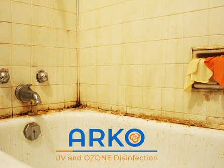 What Is Mold And Where Can You Find It in the Bathroom?