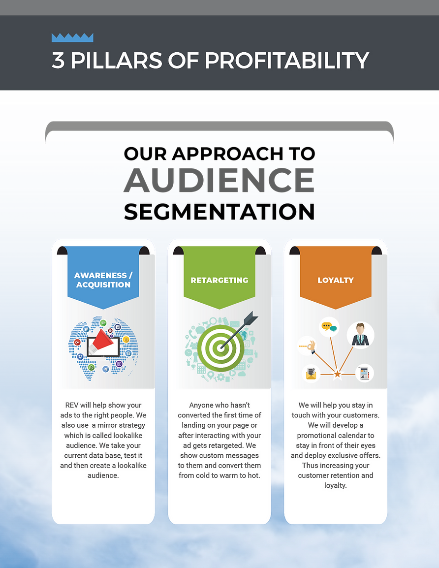 REV Marketing Audience segmentation