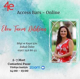 Access bars online.jpeg