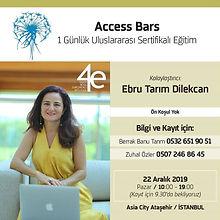 Access Bar.jpg