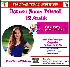 Ebru Tarım Dilekcan-Tele Konferans