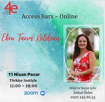 access bar online.jpeg