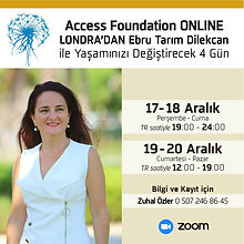 Access foundation online.jpeg