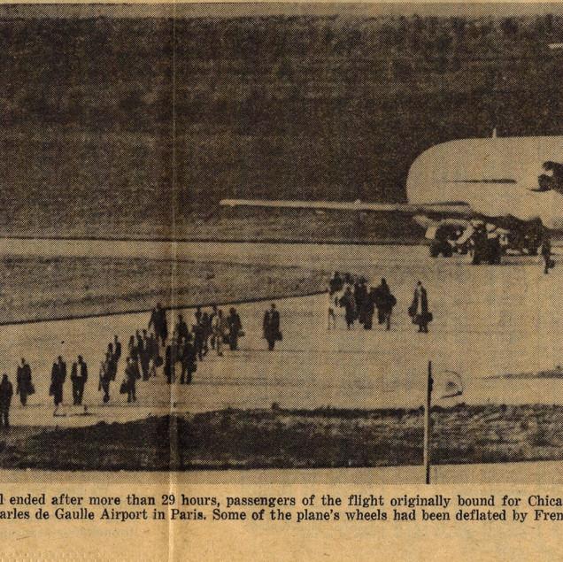Flight 355