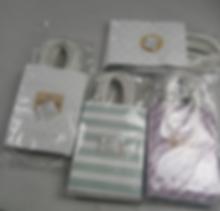 Gift Bag (Paper)