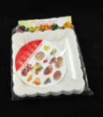 Plastic Plate (Square)