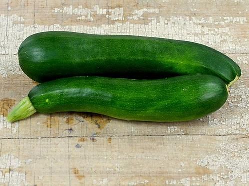 Black Beauty Zucchini Summer squash