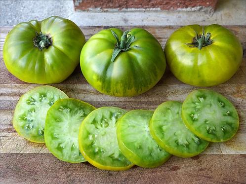 Tomato: Tasty Evergreen