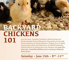 Farmer Knowledge Series: Backyard Chickens 101