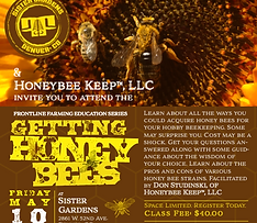 Getting Honey Bees