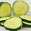 Thumbnail: Marketmore Cucumber
