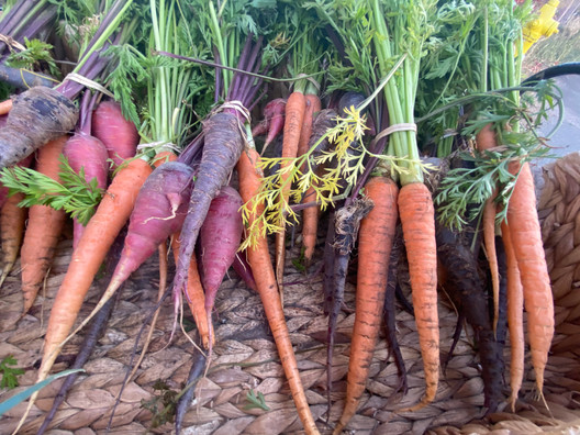 Carrots are not just orange.