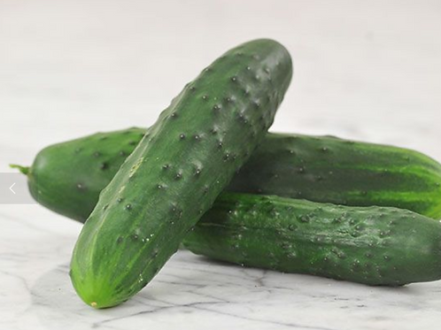 Cucumber: Marketmore 76