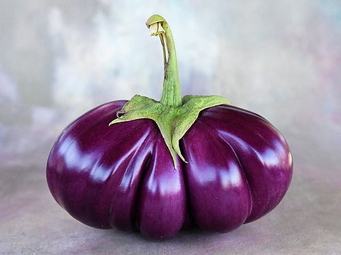 EGGPLANT THAI PURPLE RIBBED