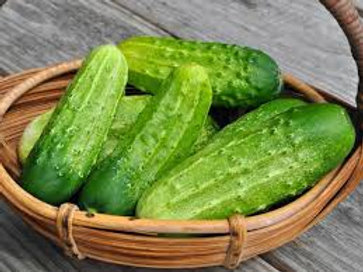Cucumber: Chicago Pickling