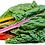 Thumbnail: Rainbow Chard (5 Color Silverbeet Swiss Chard)