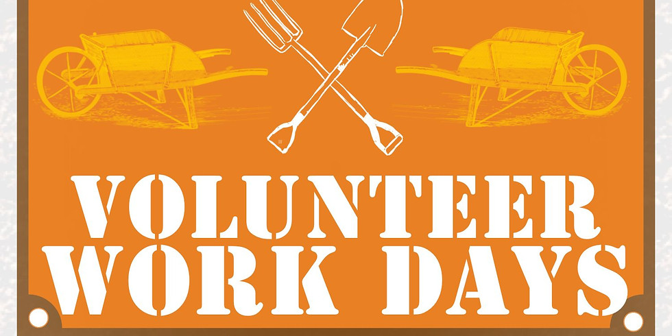 Volunteer Work Day: The Fall Clean Up Edition