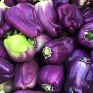 Lilac Bell Pepper