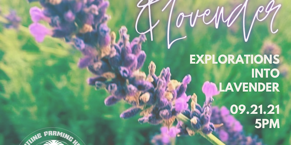 FLF Herbal Knowledge Series: Peace & Lovender: Explorations into Lavender