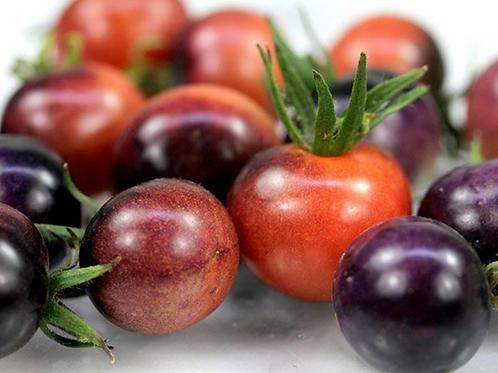 Blueberry Cherry Tomato
