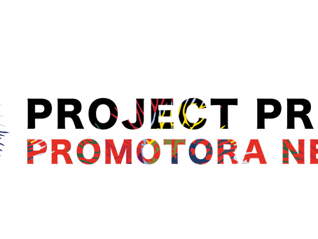 OCTOBER REPORT: PROJECT PROTECT PROMOTORA NETWORK