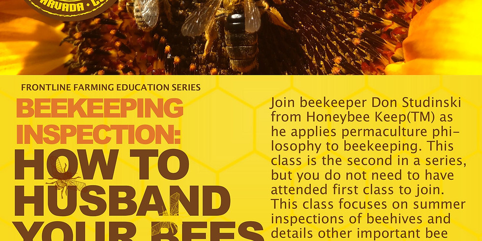 Bee Inspection: How To  Husband Your Bees