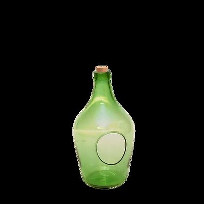 Terrarium ouvert en forme de bouteille