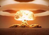 atomový hřib.jpg
