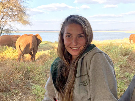 International Women's Day: What it's like being a woman in conservation biology