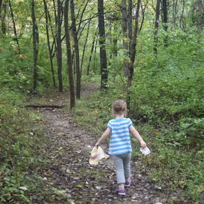 Trail Dangers--Ticks