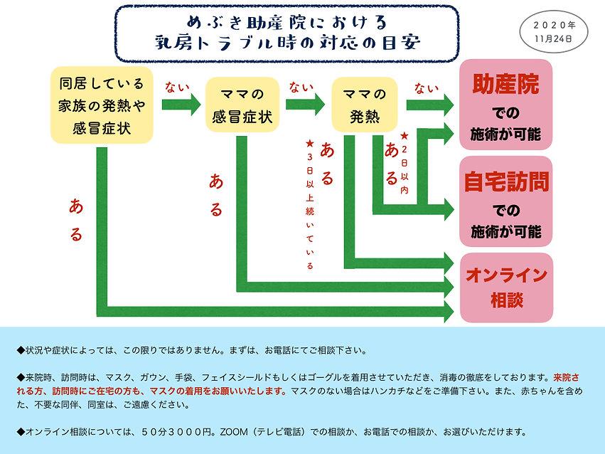 受診目安フローチャート1124.jpeg