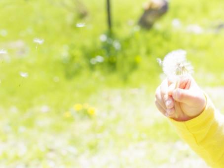 「いのちの話」〜乳幼児期から始める性(生)教育〜