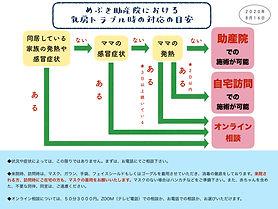 受診目安フローチャート0816.jpeg