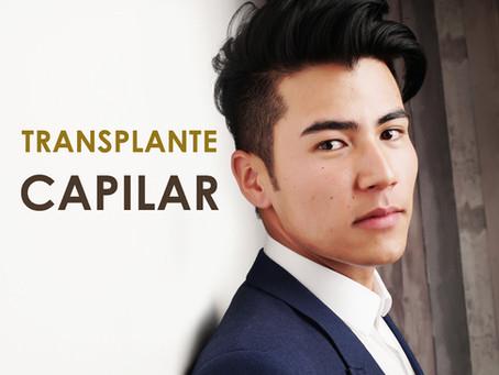 O que é transplante capilar?