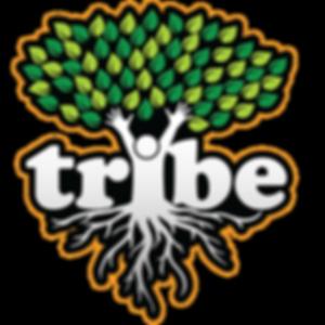 TRYBE Logo v5-01.png
