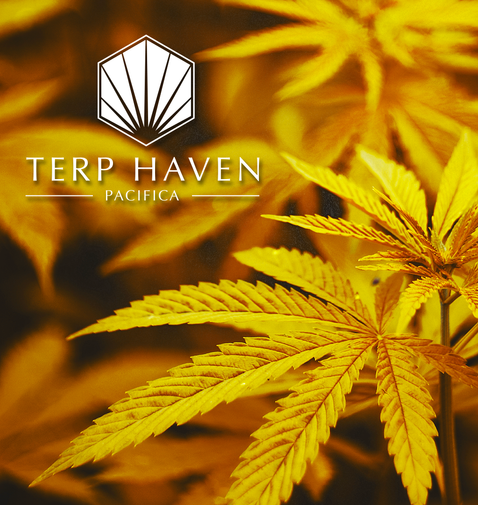Terp Haven Imagery