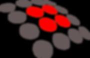 SoftGen Australia Pty Limited Logo