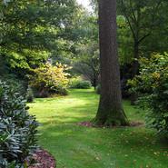 Grensenlust arboretum