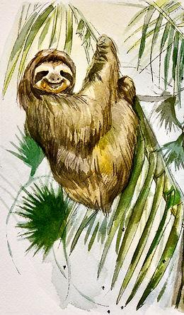 sloth%2520lounging%2520copy_edited_edite