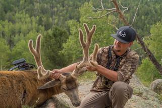 Brandon Adams 2018 Colorado Velvet Mule