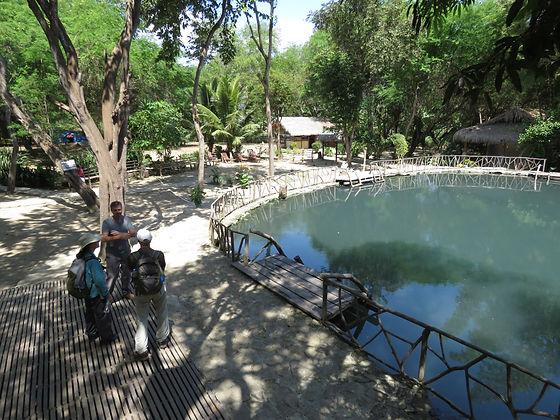 Villa de Los Suenos, Southern Ecuadorian Coast, Bed and Breakfast South Ecuador, Villa near Montañita, Humpback Whale Watching