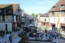 chateau-des-stuarts-aubigny-sur-nere.jpg